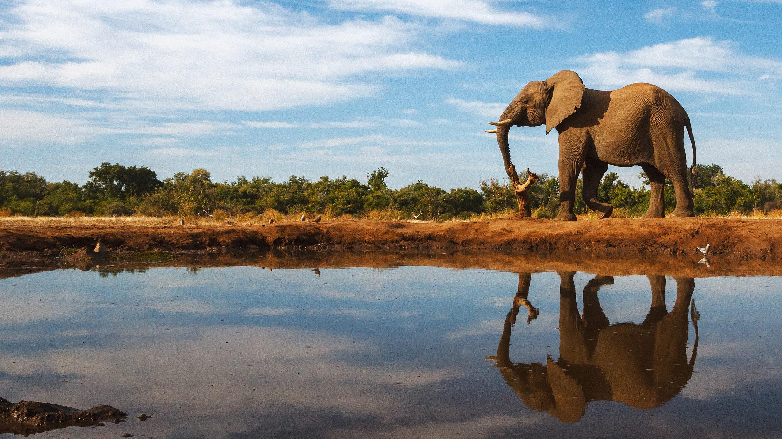 Botswana [shutterstock]