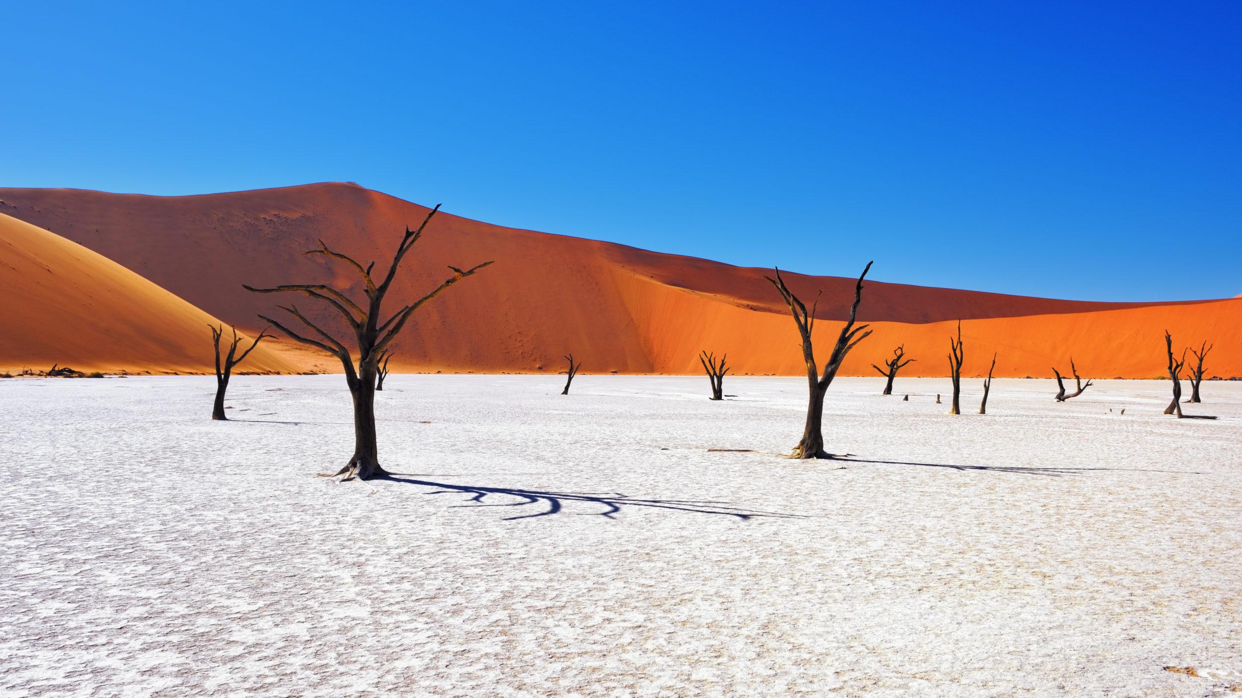 Namibia [shutterstock]