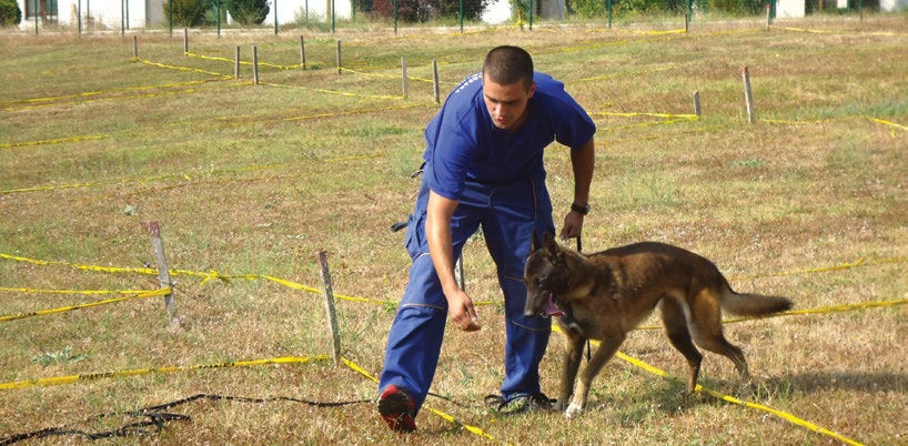 Date: 2019 Description: MDD Yser is one of the MDDs funded by the U.S. State Department with his handler Igor ?umar, in the training field in Konjic, Bosnia. © Photo courtesy of MDDC