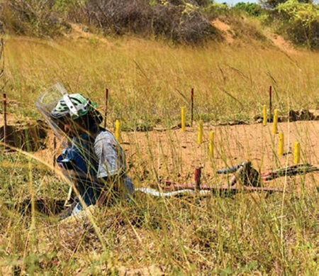 Date: 2019 Description: A deminer conducts manual clearance in Sri Lanka. © Photo courtesy of HALO