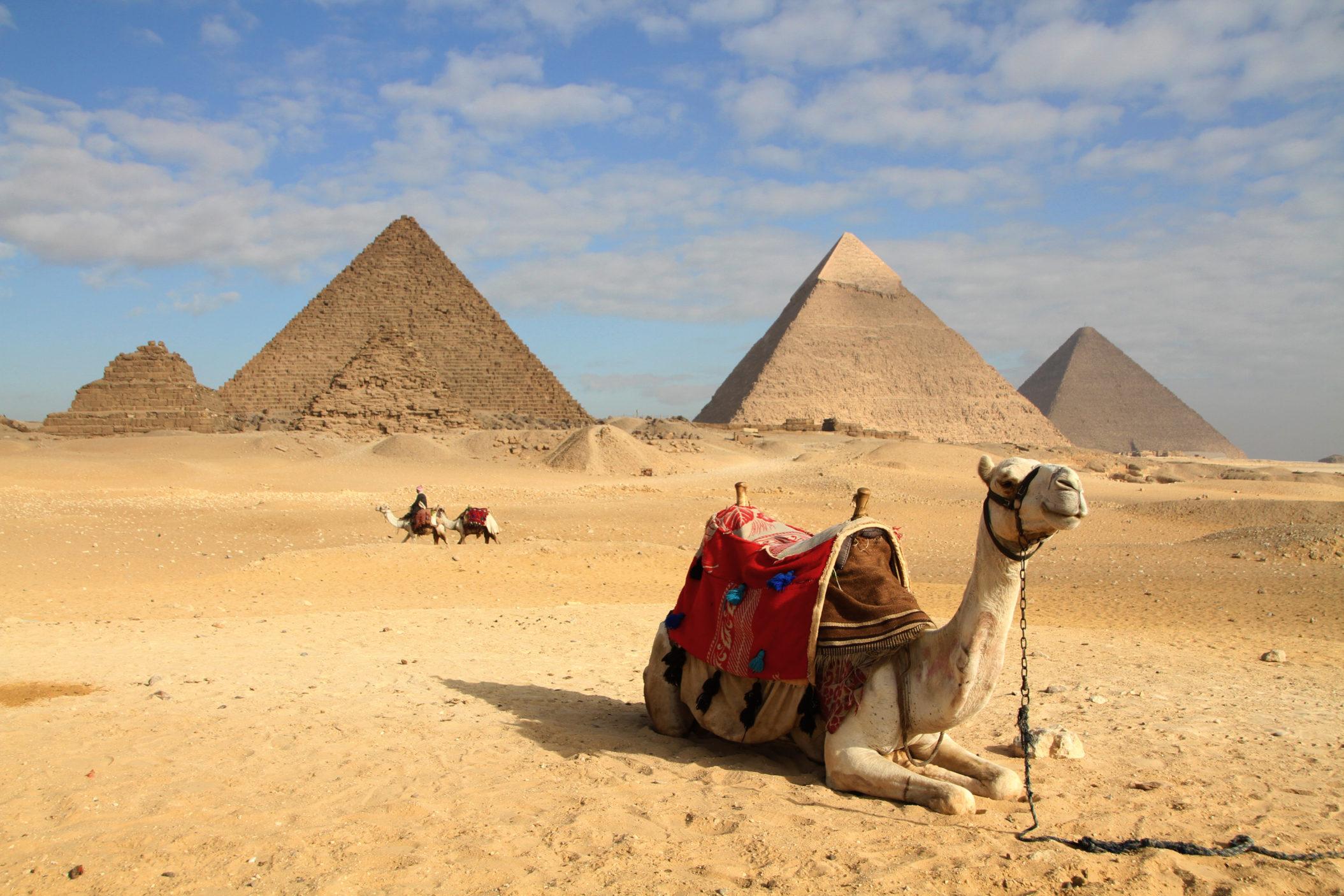 Egypt [Shutterstock]