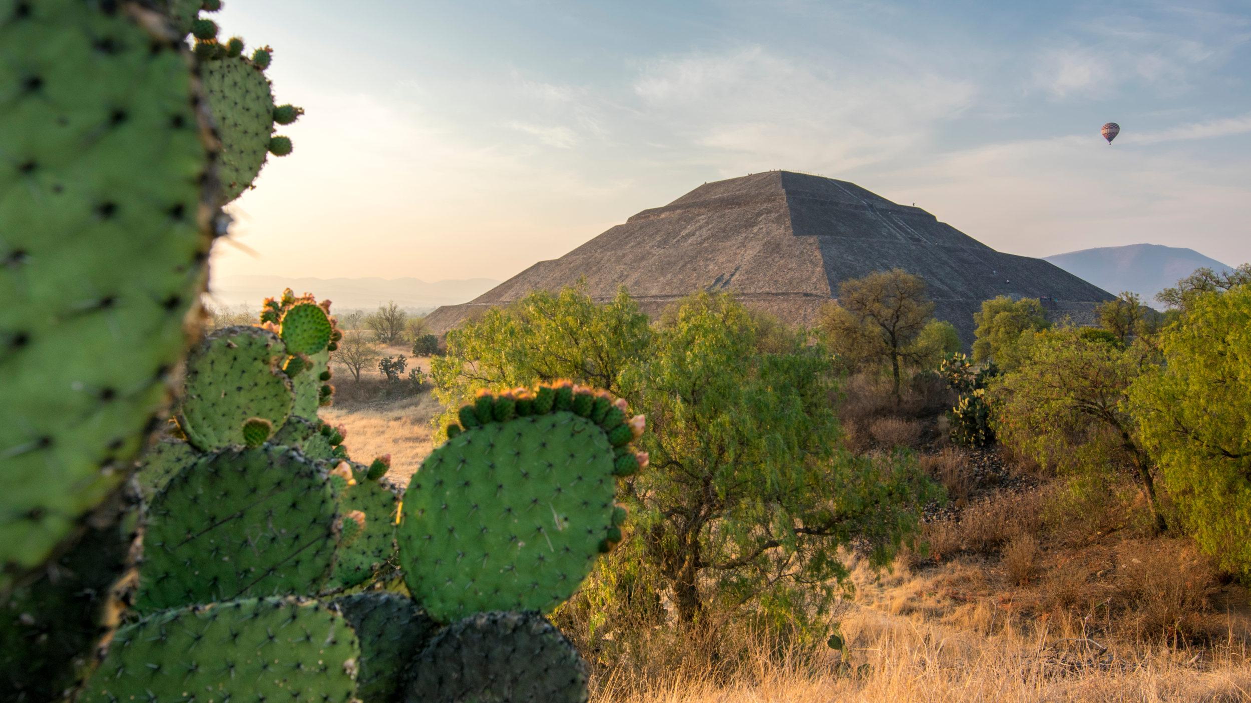 Mexico [Shutterstock]