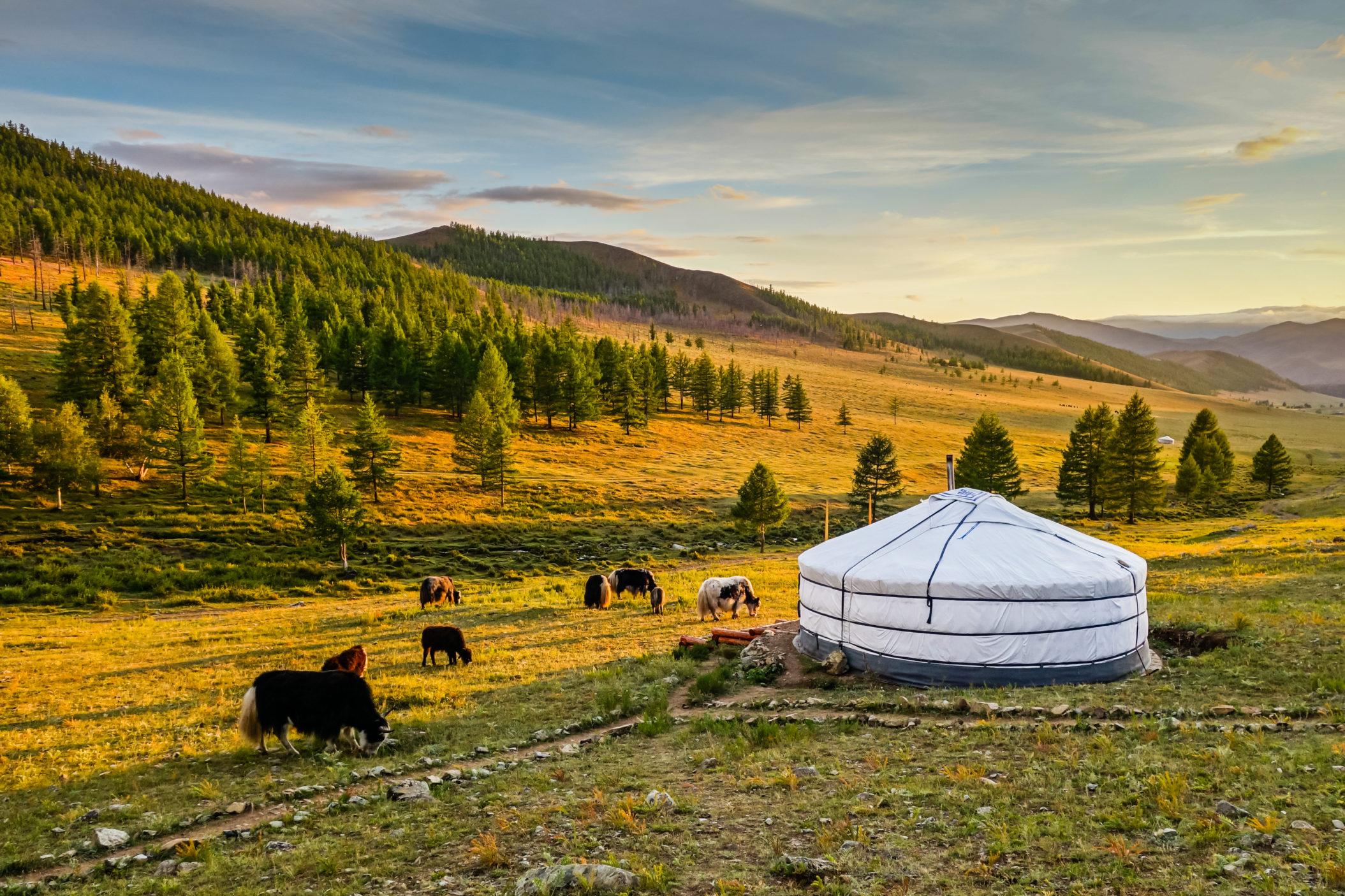 Mongolia [Shutterstock]