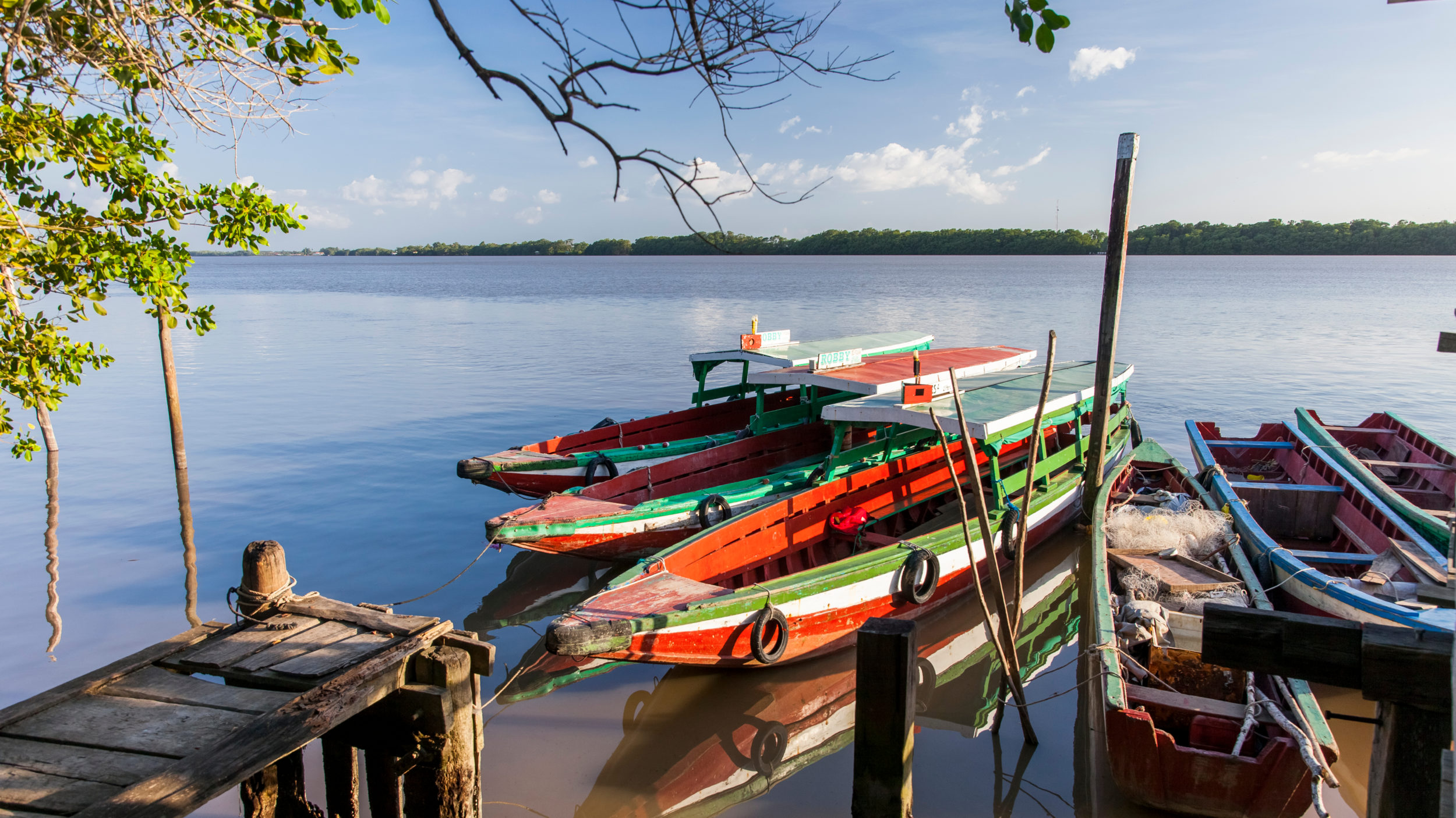 Suriname [Shutterstock]