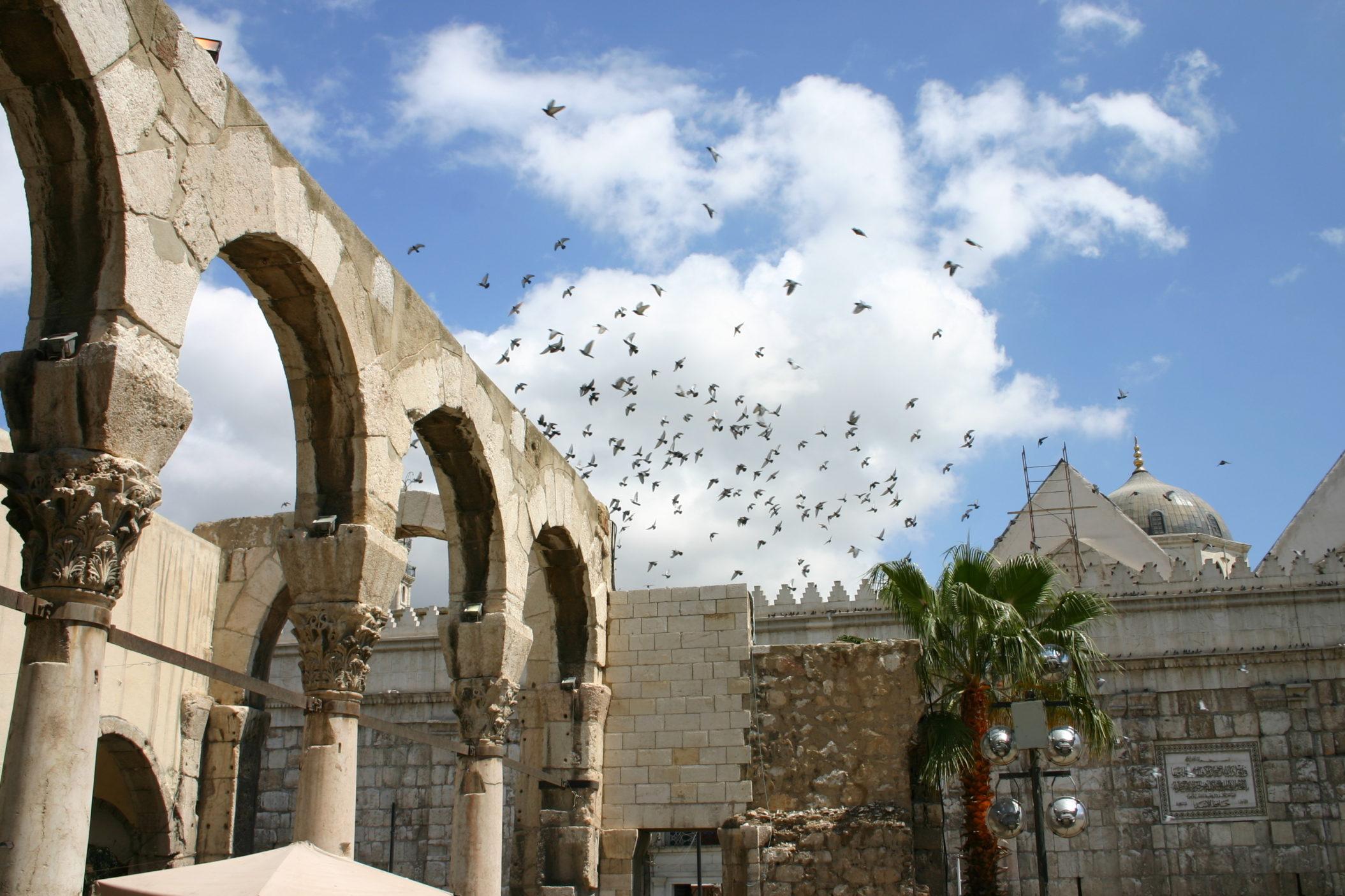 Syria [Shutterstock]