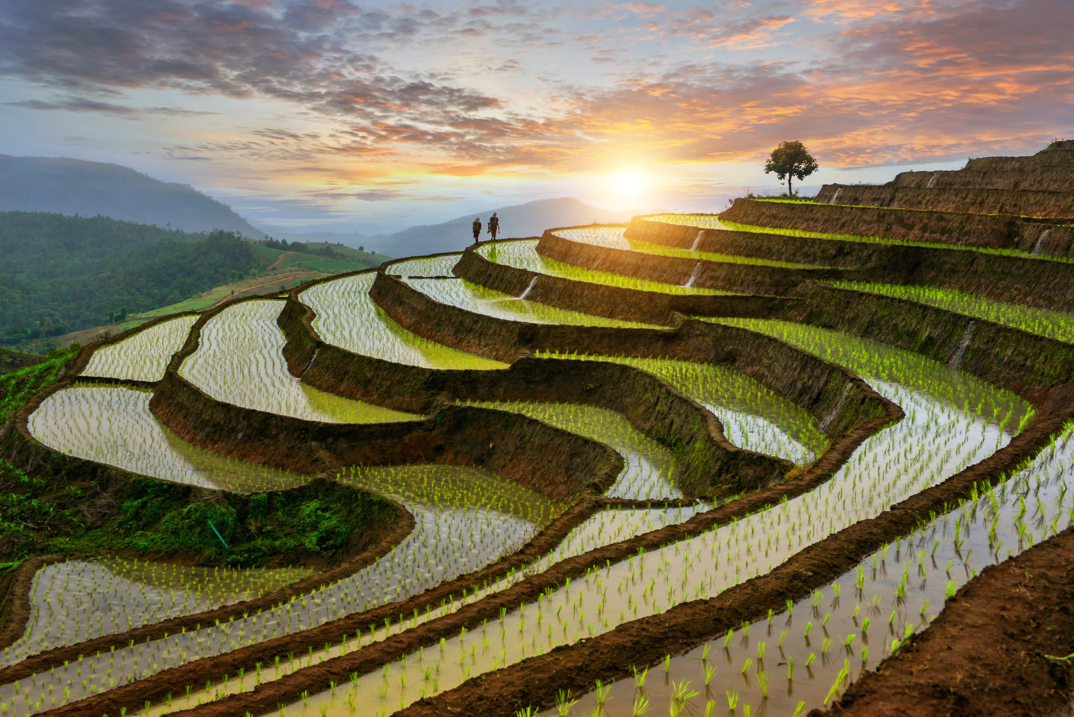 Thailand [Shutterstock]