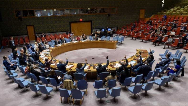 The UN Security Council Votes Unanimously to Adopt UNSC 2475 on June 20, 2019