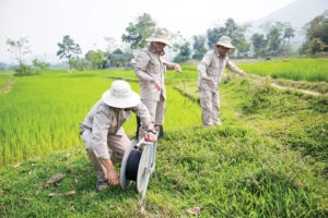 A battle area clearance team in Quang Tri Province, Vietnam. Photo courtesy of PeaceTrees Vietnam.