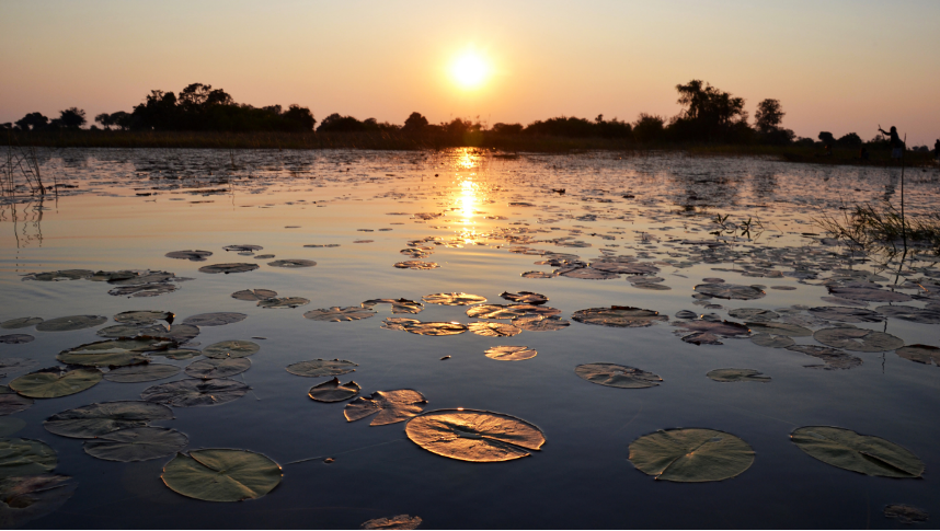 The Okavango Delta in Botswana provides a critical water source and habitat to vulnerable and endangered species, such as African elephants, rhinoceros, and lions. (Department of State photo)