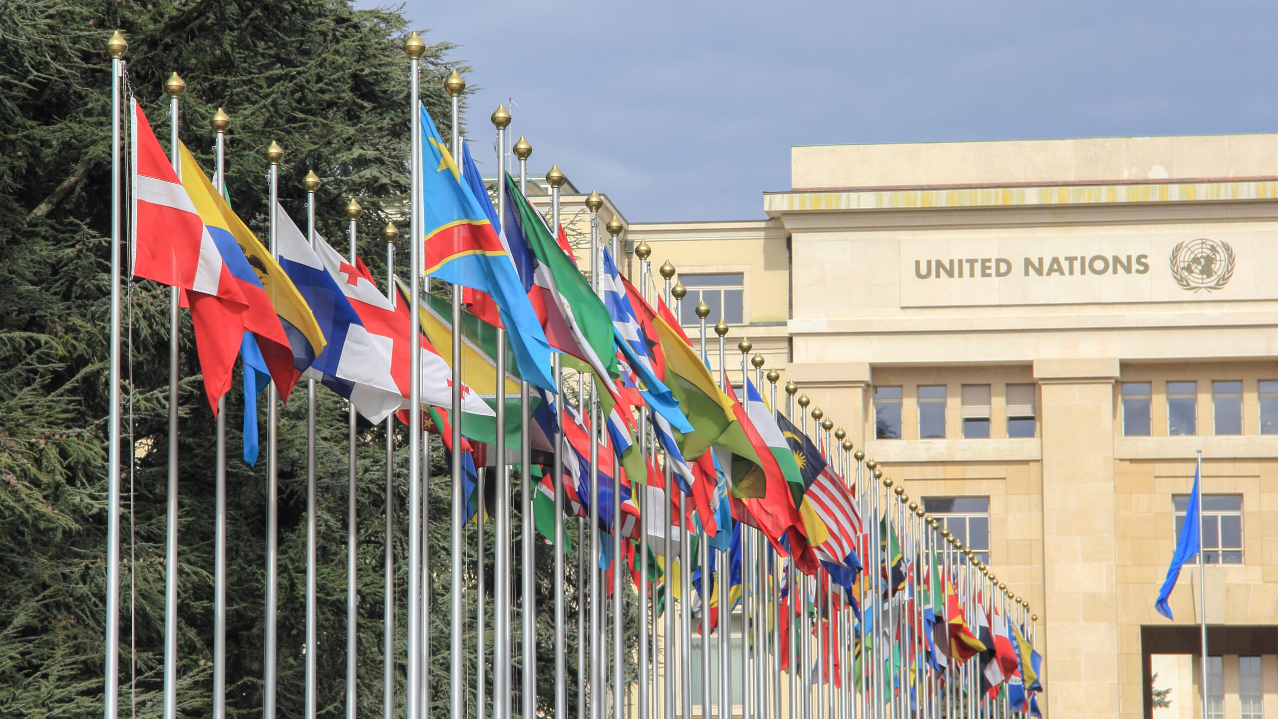 Member country flags fly in front of the UN building