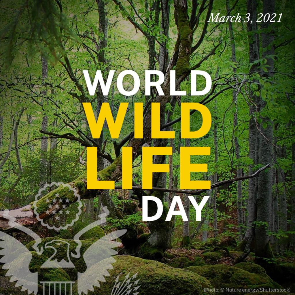 World Wildlife Day March 3, 2021