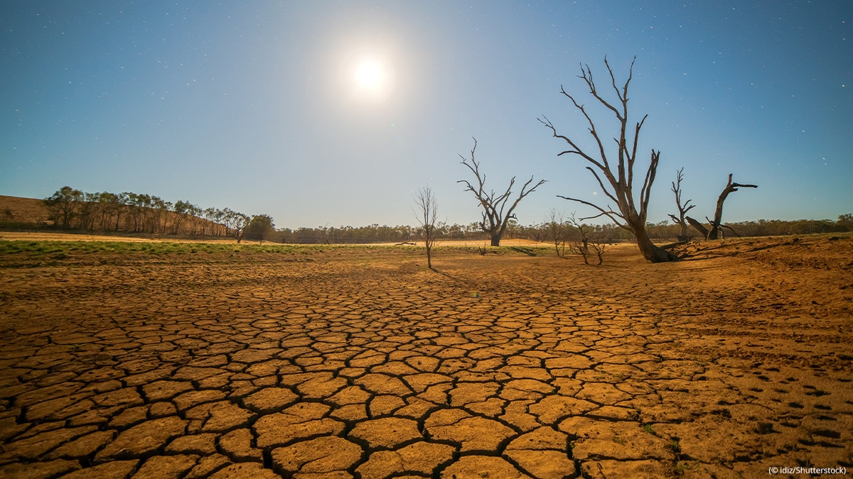 A drought cracked desert landscape is pictured.
