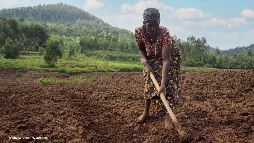 Natural resources are essential to sustain the livelihoods of many women and girls, who also tend to have fewer alternative livelihood options if those natural resources disappear.
