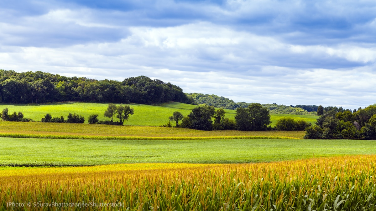 The American countryside is pictured.